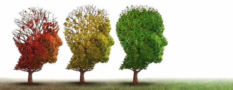 Dementia - What steps can we take to safeguard our loved ones?